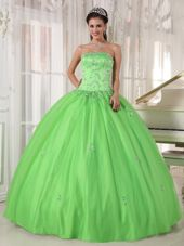 Spring Green Taffeta and Tulle Quinceanera Dress