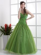 Latest Olive Green Quinceanera Dress Sweetheart Organza for 2013