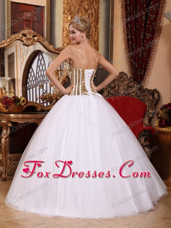 important floor length dresses for a quinceanera with petticoat