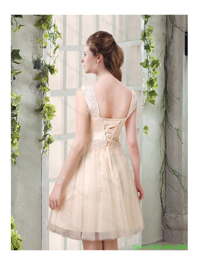 Plus Size Straps A Line Champagne Prom Dresses with Appliques
