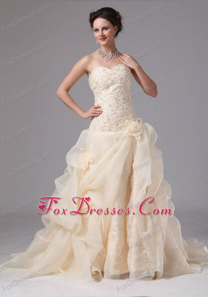 Champagne Wedding Gown Embroidery Chapel Train Organza