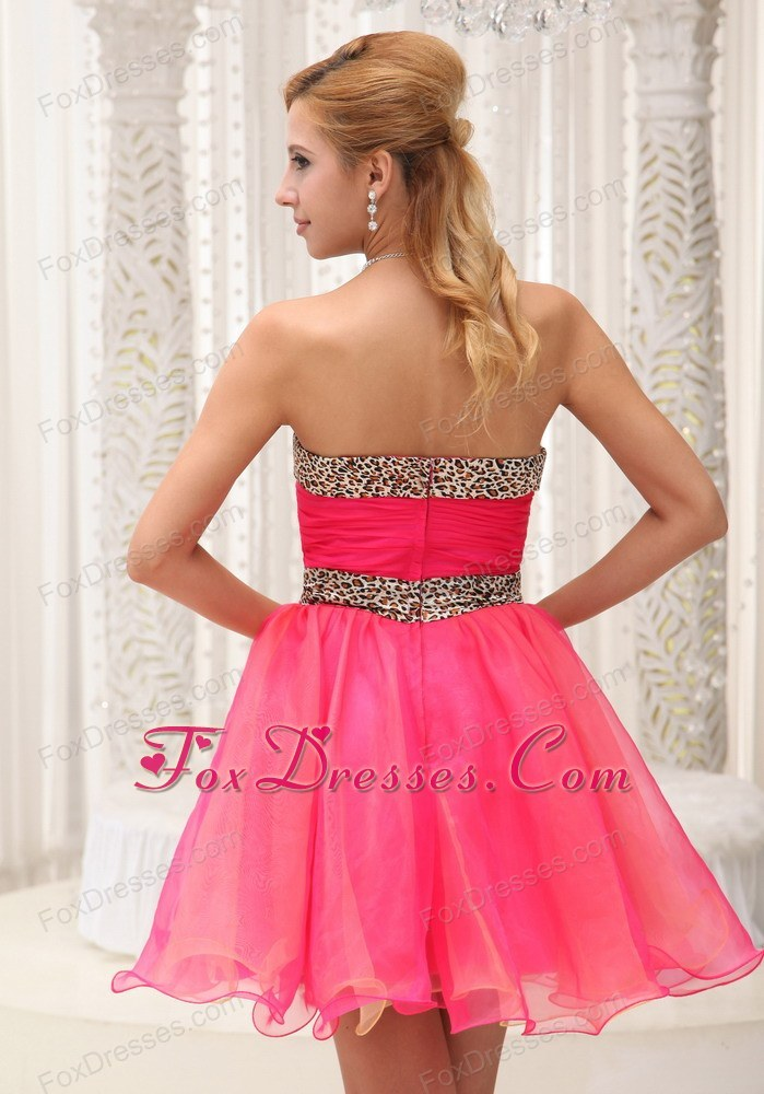 affordable prom homecoming dress