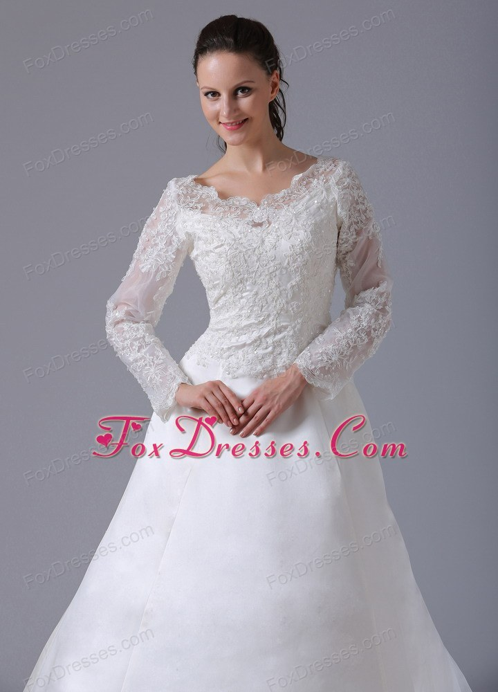 appliques wedding gown for theme costumes