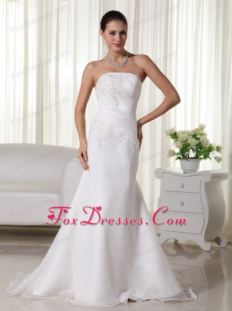 Mermaid Brush Organza Popular Wedding Dress Appliques