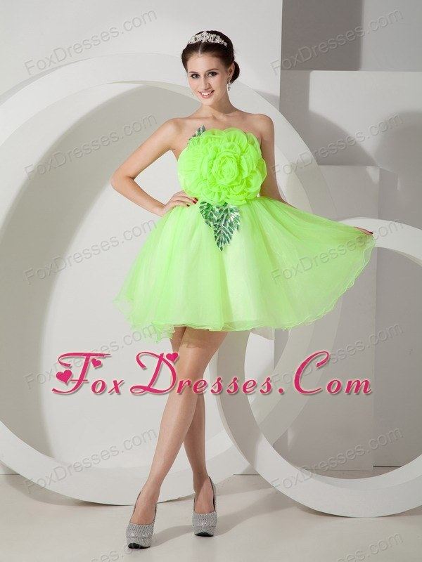 Hand Made Flowers Spring Green A-line for Prom Dress